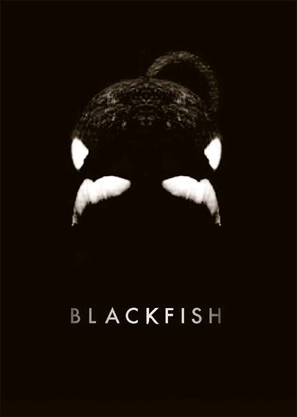 Blackfish on Netflix UK