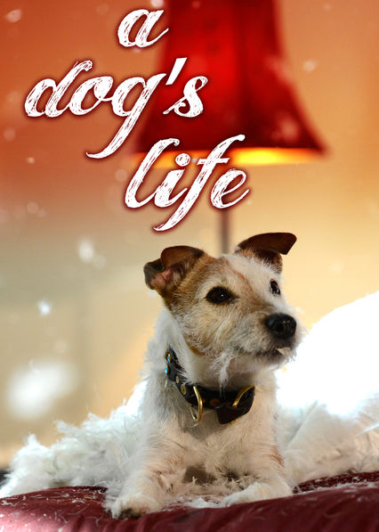 A Dog's Life on Netflix UK