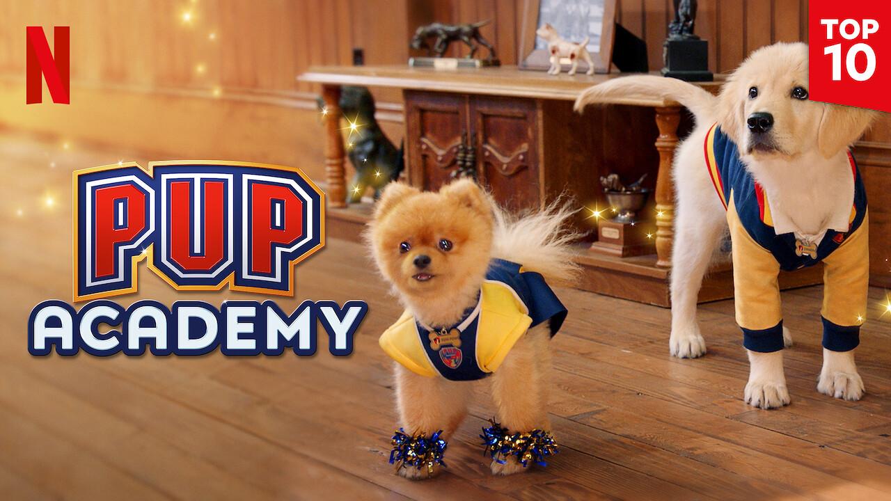 Pup Academy on Netflix UK