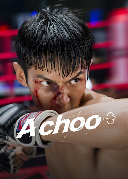 A Choo on Netflix UK
