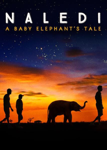 Naledi: A Baby Elephant's Tale on Netflix