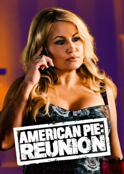 American Reunion on Netflix UK